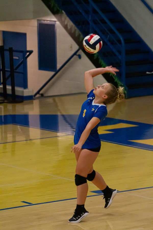 A photo of Skylar Van Winkle about to hit a volleyball overhand.
